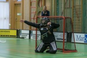 2020-02-29 Fröjereds IF Dam Allsvenskan-Linköping IBK
