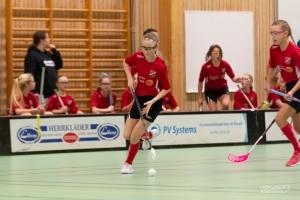 2019-02-23 Fröjereds IF-Fagerhult Habo IB