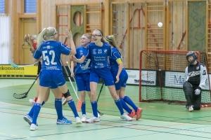 2020-02-01 Fröjereds IF  F06/07-Fagerhult Habo IB