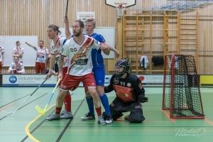 2019-11-19 Herr Div3-IBK Elfhög